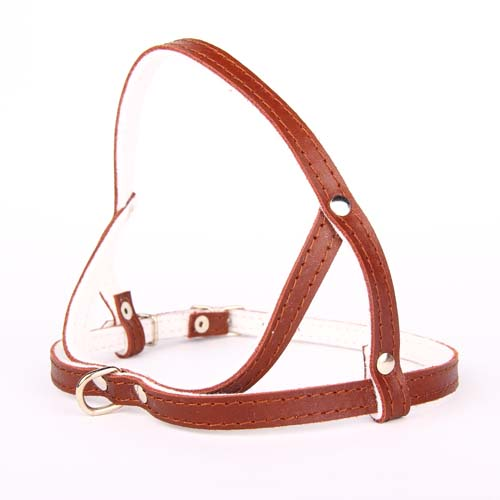 COBBYS PET postroj leather-felt 10mm/55cm